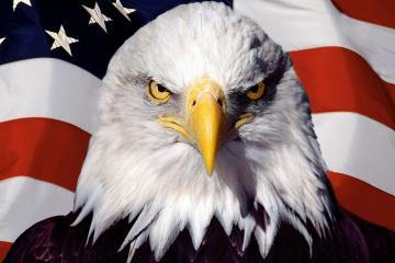 Tìm hiểu về linh thú của các nước trên thế giới - Phần 2: Châu Mỹ