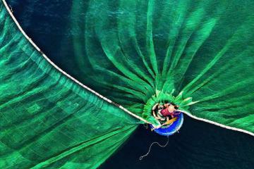 Ảnh đẹp Việt Nam lọt top bức ảnh xuất sắc nhất thế giới 2019
