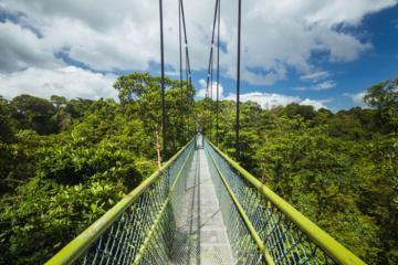 'Sống ảo' lung linh với 9 cây cầu nổi tiếng ở Singapore