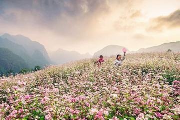 Vòng quanh Việt Nam với 10 điểm du lịch đẹp nhất mùa thu đông