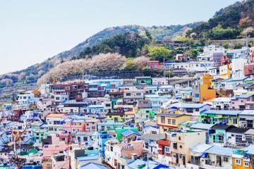 Khám phá Busan với 12 hoạt động không thể bỏ lỡ