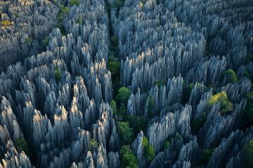 Khu rừng đá sắc như dao cạo
