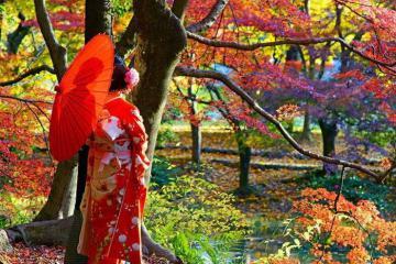 Lịch lá vàng lá đỏ ở Hàn Quốc và Nhật Bản