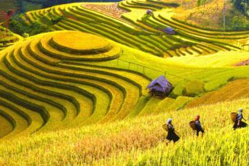 Mùa thu Hà Giang có gì đặc sắc?