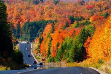 Du lịch Canada mùa thu - say lòng vẻ đẹp xứ sở lá phong