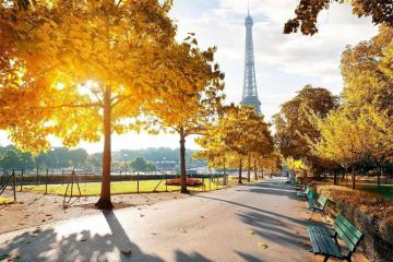 Paris rực trời lá vàng và cảnh sắc mùa thu đẹp nao lòng trên đất Pháp