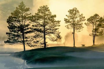 Đến Đà Lạt tháng 9, đắm mình vào làn sương khói mờ ảo sớm ban mai