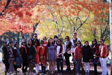 Ưu đãi đến 3 triệu đồng chùm tour nước ngoài ngắm mùa lá đỏ