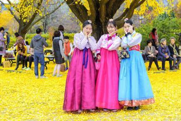 Những trải nghiệm mùa thu ở Hàn Quốc không nên bỏ lỡ