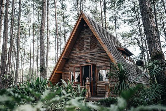 Lạc vào xứ thần tiên trong rừng tại Chiang Mai