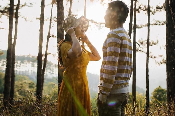 Buổi chiều hoàng hôn tại rừng thông gần đồi cỏ hồng