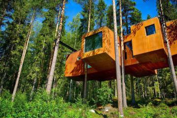 Khách sạn trên cây Treehotel độc đáo nhất Thụy Điển