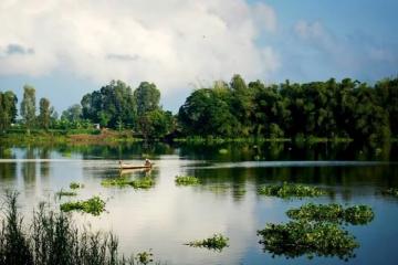 Búng Bình Thiên mùa nước nổi - điểm du lịch kỳ thú ở An Giang