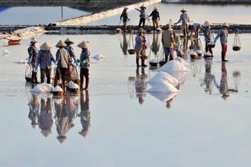 Đến thăm cánh đồng muối Hòn Khói, Nha Trang - món quà tuyệt vời từ biển khơi