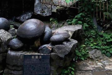 Vách đá kỳ lạ 30 năm đẻ trứng một lần ở Trung Quốc