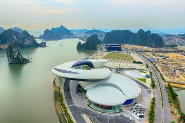 Check-in 'Cung cá heo' vờn sóng, điểm du lịch hấp dẫn ở Hạ Long