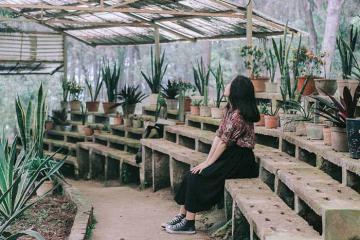 5 điểm du lịch gần Hà Nội có thể đi về trong ngày