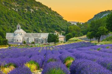 Du lịch Pháp, khám phá vùng đất Provence thơ mộng