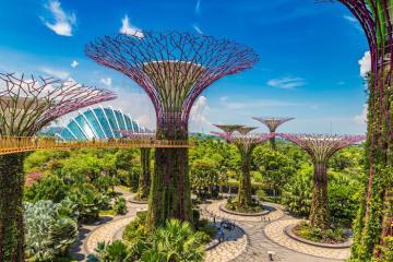 Du lịch Singapore với 10 trải nghiệm miễn phí