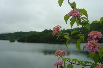 Khám phá hồ Việt An – điểm du lịch sinh thái yên bình đất QuảngNam