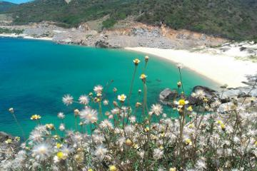 Du lịch Khánh Hòa: Bạn đã ghé thăm 'Tứ Bình' - 4 hòn đảo nổi tiếng?
