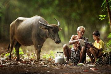Cuộc sống thường nhật mộc mạc ở làng quê Indonesia
