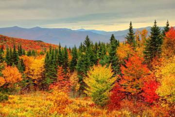 New England ở Mỹ lãng mạn thời khắc sang thu