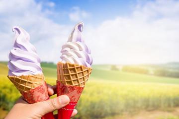 Dừng chân thưởng thức 5 món kem Hokkaido ngon nức tiếng