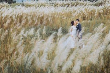 Tháng 11 rủ nhau về Đà Nẵng check-in cánh đồng hoa cỏ lau tuyệt đẹp