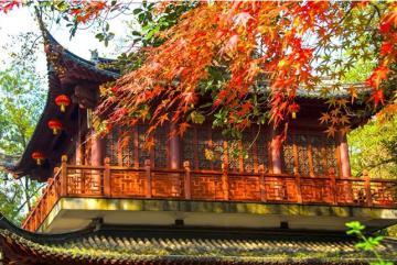 Du lịch Nam Kinh - tận hưởng cảnh sắc mùa thu ở cố đô Trung Quốc