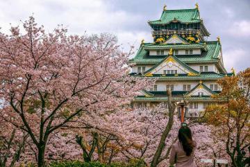 6 điều cần biết trước khi du lịch Nhật Bản một mình