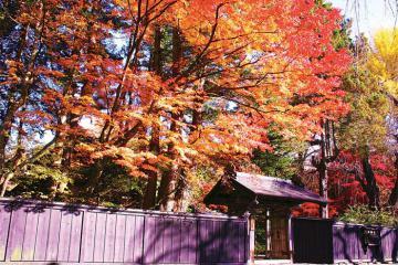 Chiêm ngưỡng 5 thắng cảnh tuyệt sắc ở Tohoku, Nhật Bản