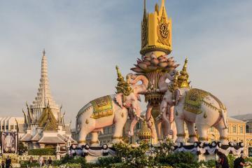 Sự thật thú vị về loài voi ở Thái Lan - biểu tượng quốc gia của xứ chùa vàng