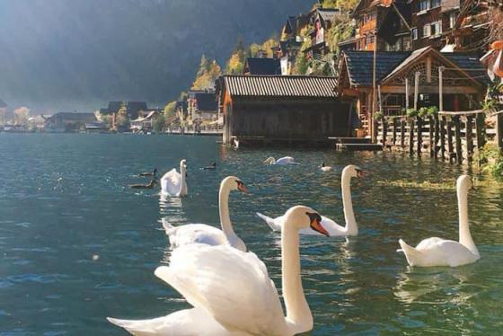 Du lịch Áo - chu du đến ngôi làng cổ tích Hallstatt
