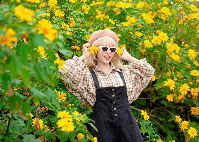 Bỏ túi những kinh nghiệm săn hoa dã quỳ nở đẹp nhất năm