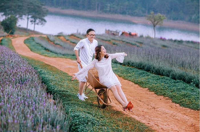 Cánh đồng rộng hơn 6ha ngập tràn hoa oải hương