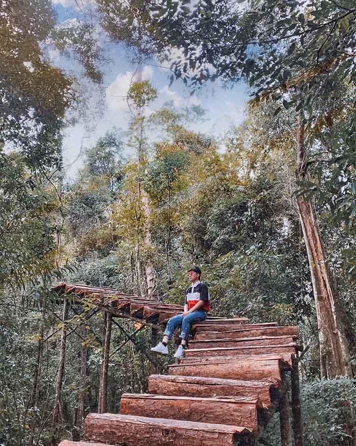 Wooden bridge in the forest at Secret Garden.