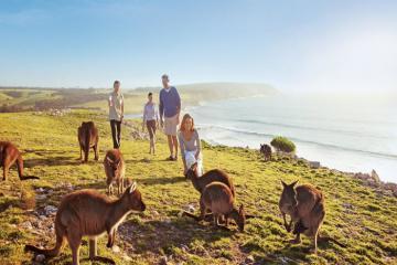 8 điều cần lưu ý khi khám phá thiên nhiên hoang dã nước Úc