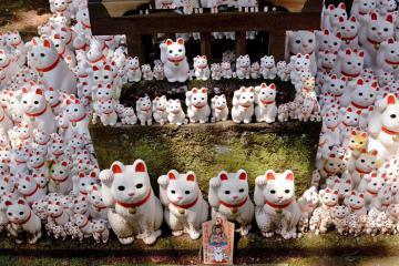 Đến Tokyo, thăm đền Gotokuji - 'xứ sở' của hàng trăm chú mèo biết vẫy tay và đem lại may mắn