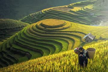 Chiêm ngưỡng những địa danh Việt được du khách quốc tế yêu thích