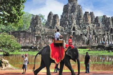 Campuchia ngừng sử dụng voi phục vụ du lịch ở khu vực quần thể Angkor Wat