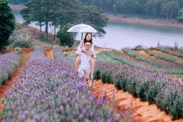 Du lịch Đà Lạt khám phá thành phố ngàn hoa giá chỉ từ 1.490.000 đồng