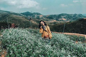 Thung lũng hoa trên đỉnh đèo tựa cổ tích tại Pha Đin Pass - Điện Biên
