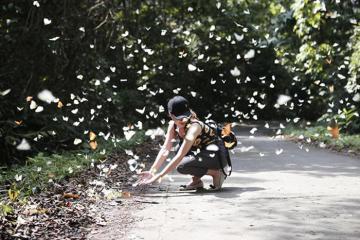 Đạp xe xuyên rừng, săn bướm ở vườn quốc gia Cúc Phương, bạn đã thử chưa?