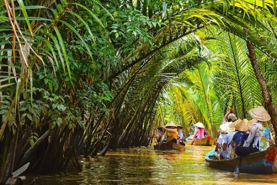 Khu du lịch Cồn Quy - 'Viên ngọc xanh' của xứ dừa Bến Tre