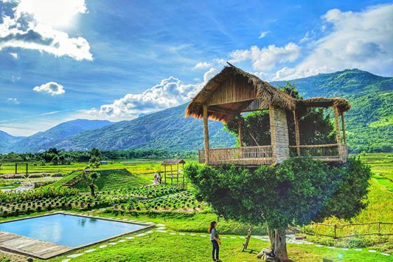 Ngôi nhà trên cây độc nhất tại phim trường Du Long - Ninh Thuận