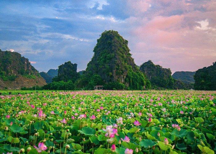 Hang Múa Ecolodge Ninh Bình