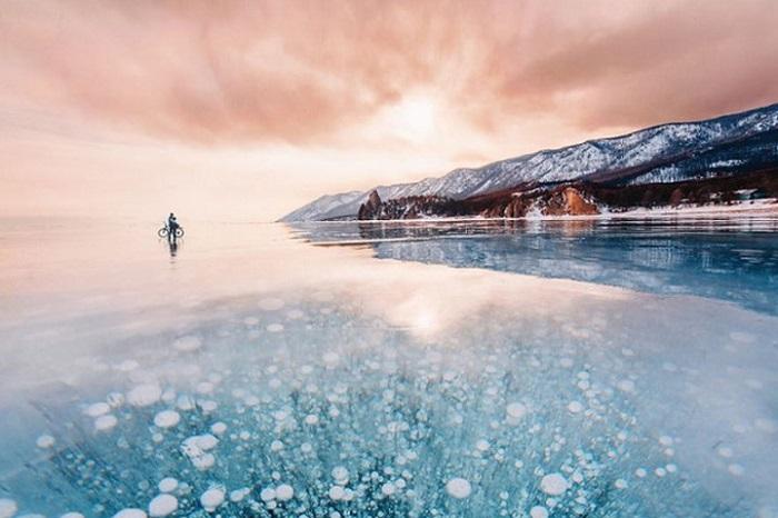在冰湖下种树