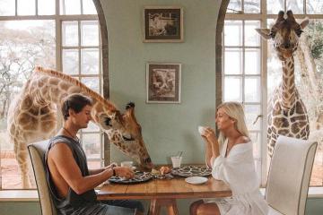 5 khách sạn tại Anh cho bạn trải nghiệm sống giữa thiên nhiên, ngủ cùng động vật hoang dã