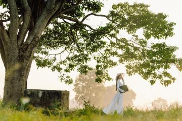 Bối cảnh phim 'Mắt Biếc' - Làng Hà Cảng, Huế đẹp như tranh vẽ